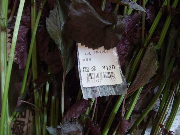 赤紫蘇 梅干作り